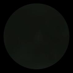 sku#2800 Special Black BB, paint - 6 grams