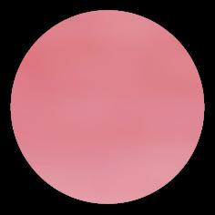 sku#2400 Salmon Light , paint - 6 grams