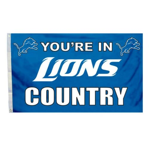 Detroit Lions You're In Country Banner Flag 3' x 5' NFL Licensed
