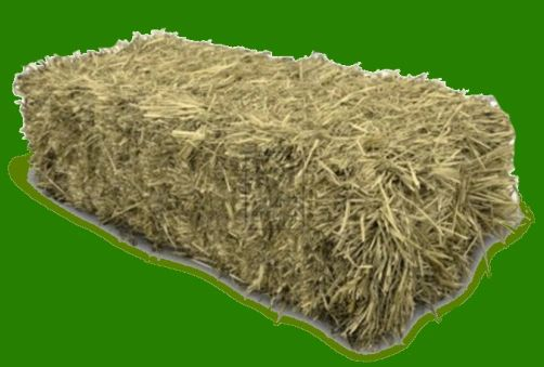 Texas Meadow Hay Square Bale
