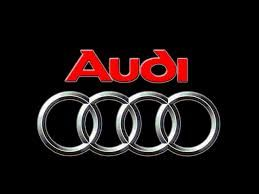 AUDI CATCH CAN DUAL VALVE COMPLETE KIT