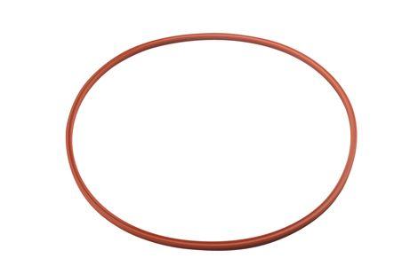 MDT/Harvey Chemiclave 6000, 8000, & Aquaclave 30 Door Gasket/Seal