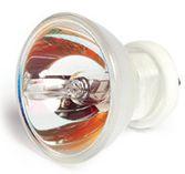 Curing Light Bulb, 12V 100 Watt