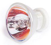 Curing Light Bulb, 12 Volt 75 Watt