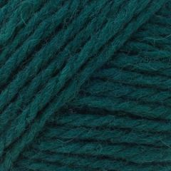 Brown Sheep Company Nature Spun Worsted, Enchanted Forest, 3.5 oz.
