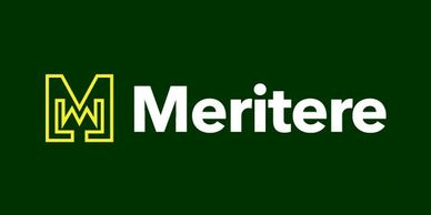 Meritere.com for sale on Squadhelp Merit, awards, education, consulting