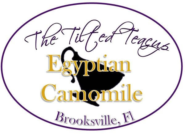 Egyptian Camomile The Tilted Teacup Tea Room And Boutique