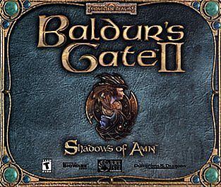 Baldur's Gate II: Shadows of Amn Game for Windows PC CD-ROM (2000) in Retail Box