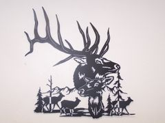 Elk With Scene