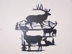 Elk Views