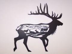 Elk With Calves Body Scene