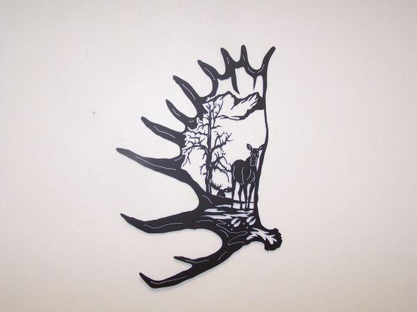 Moose Antler