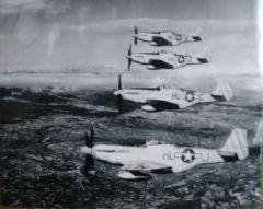 North American Aviation P-51 Mustangs In Formation Photo PHO-0106