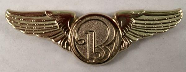 """Beechcraft Wings, 2"""" WIN-0105"""