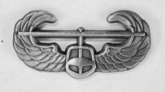 "Army Air Assault Wings, 1 1/4"" WIN-0119"
