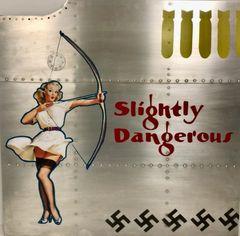 """Nose Art Panel- """"Slightly Dangerous"""" NAP-0133"""