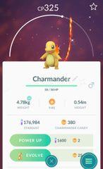 Charmander - Shiny