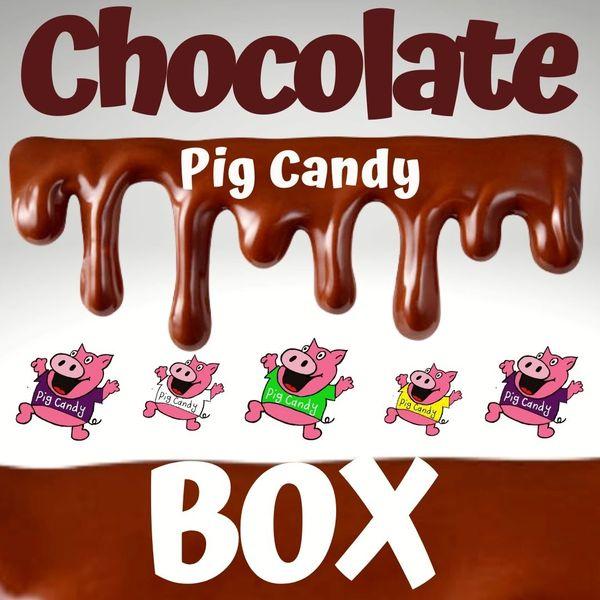 Chocolate PigCandy Box