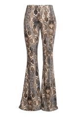 Snake Print Brushed Knit Bell Bottom Pant, Stone Color