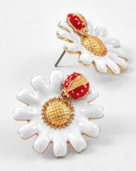Ladybug Bloom