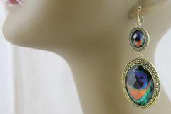 Peacock Drops