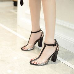 Euro Transparent Pointed Chunky Sandals