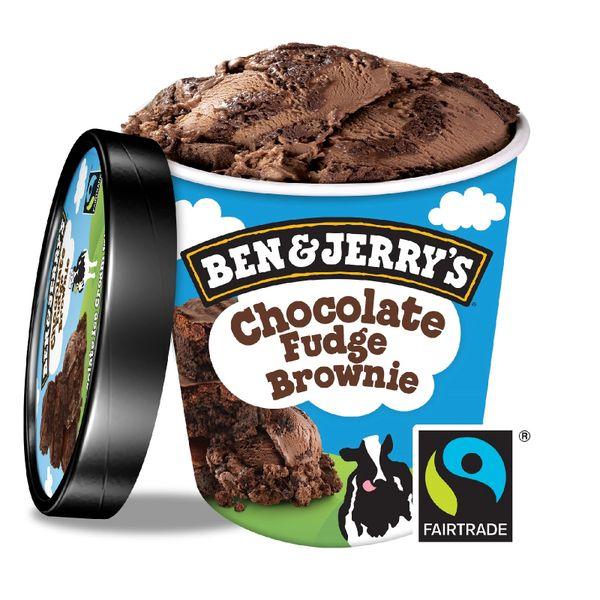 Ben & Jerry's Chocolate Fudge Brownie Ice Cream 458 ml