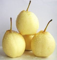 White Pear (5 Pieces)