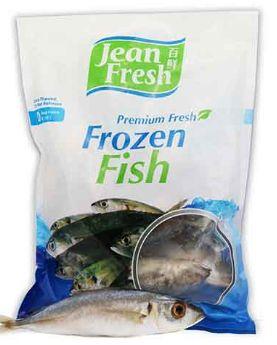 JF Frozen Round Scad IQF 1KG