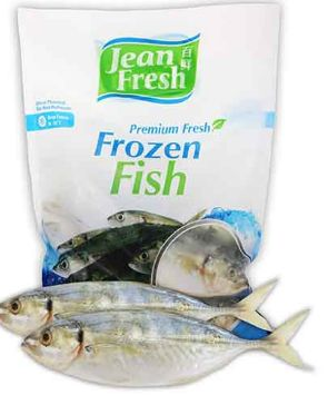 JF Frozen One Finlet Scad IQF 1KG