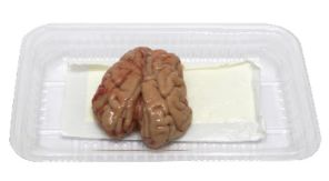 Indonesia Pig Brain 2pcs