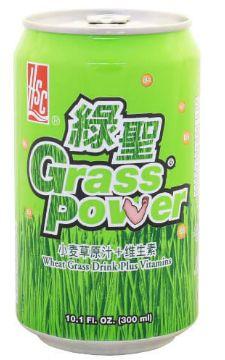 HSC Grass POWER 300ML