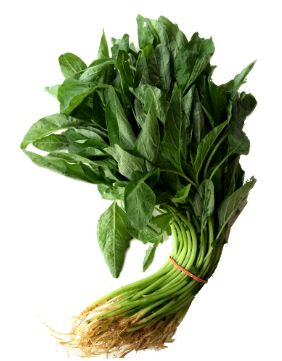 MYS Baby Sharp Spinach 250G