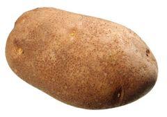 USA Russet Potato