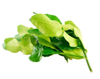 THA Lime Leaf 50G