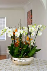 Gold Orchid Arrangement Centerpiece