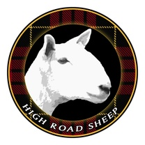 High Road Sheep