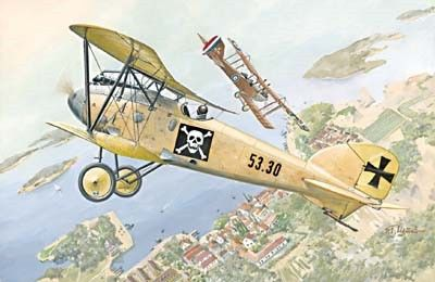 1/72 Albatros D III Oeffag s53 German BiPlane Fighter - Roden 22