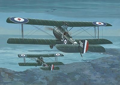 1/48 Sopwith 1-1/2 Strutter Comic RFC BiPlane Night Fighter - Roden 407