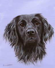 Custom Pet Portrait for Charity hand painted from your photo. Proceeds supports animal rescue.