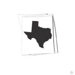 Texas state sticker