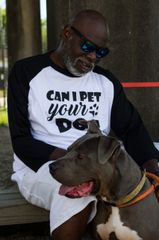 Can I Pet Your Dog? Shirt