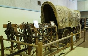 covered wagon and harnesses