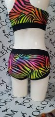 Rainbow zebra bottoms