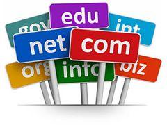 Domain Name Renewal