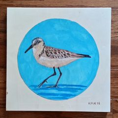 Wood Square - Sandpiper I