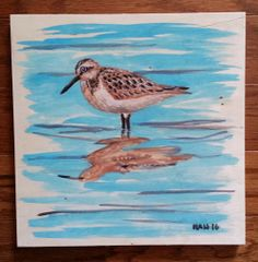 Wood Square - Sandpiper II