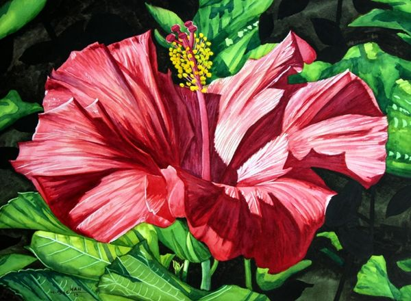 Hibiscus - Red I