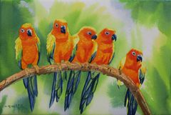Parrot Buddies