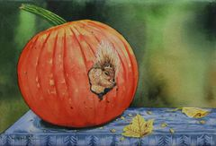 Squirrel in Pumpkin